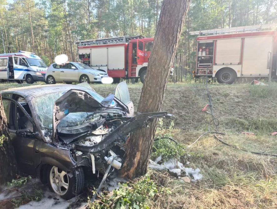 Samochód uderzył w drzewo. Nie żyje 14-letni pasażer